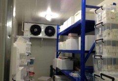 制作一个医药冷库要多少