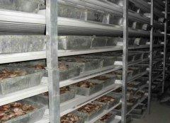 肉类冷藏库制作安装